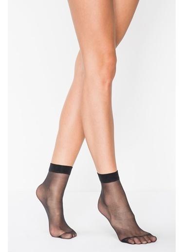 Penti Kadın Ten Rengi Fit 15 Soket 3'lü Çorap PCLP0A8A19SK Siyah